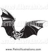 Retro Illustration of a Black and White Evil Vampire Bat in Flight by Lawrence Christmas Illustration