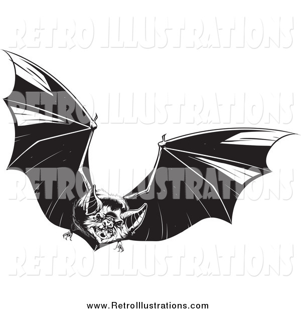 Retro Illustration of a Black and White Evil Vampire Bat in Flight